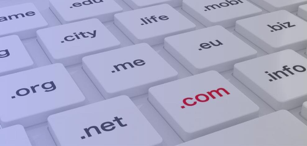Domain Types